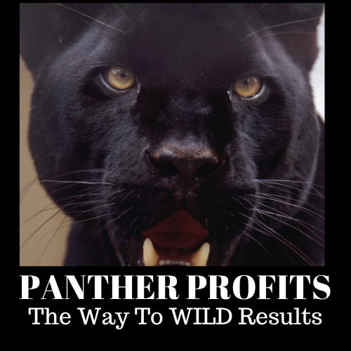 Panther-Profits-Review
